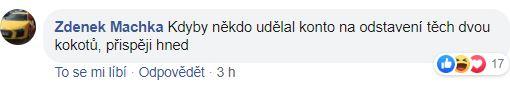 Zdeněk Machka pod příspěvkem Milionu chvilek pro demokracii