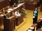 Poslanci opět navrhli doplnění pojmenování svátku 17. listopadu