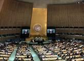 Ruský návrh rezoluce kritizující noční útoky na Sýrii Rada bezpečnosti OSN zamítla