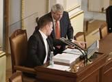 Vláda s důvěrou do léta. Prezident Zeman dal Babišovi termín