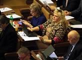ANO: Ivana Dobešová monitorovala parlamentní volby v Kyrgyzstánu