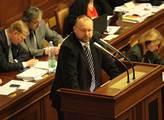 Místopředseda sněmovny zahájí výstavu Sedlická krajka v proměnách času