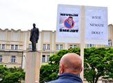 Demonstrace Milionu chvilek v Hradci Králové