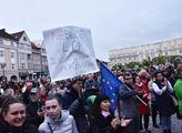 Demonstrace za nezávislost české justice v Hradci ...
