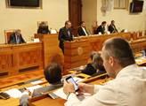 Senát se chce na dubnové schůzi zabývat politickou situací včetně výzvy studentů