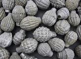 Podomácku vyráběné granáty