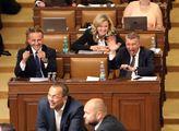 Žádost vlády Andreje Babiše o důvěru sněmovny