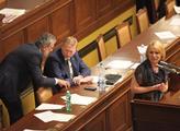 Místopředseda vlády  Pavel Bělobrádek