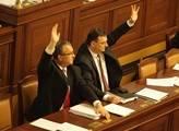 Poslanci by podle vlády měli podpořit jen svou podobu reforem