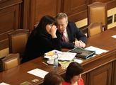 Schůze sněmovny. Na programu například novela záko...