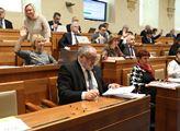 Schůze Senátu. Senátoři projednali mimo jiné zákon...
