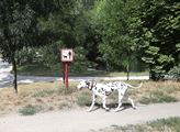 Volné pobíhání psů je ovšem zakázáno