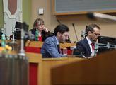 Jednání pražského zastupitelstva. Na programu bylo...
