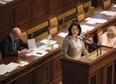 Miroslava Němcová při interpelaci na premiéra