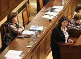 Vláda projedná návrh strategie rovnosti žen a mužů do roku 2030