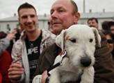 Dav obdivoval bílého psa