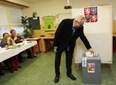 Toto by nastalo, kdyby soud zrušil volbu Miloše Zemana
