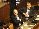 Ministři Jan Mládek a Jiří Dienstbier