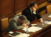 Premiér Nečas se obhajoval před sněmovnou, avšak k...