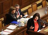 Ve sněmovně se hovořilo o účinnosti nebo neúčinnos...
