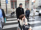Hřib s vozíkem