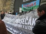 V Praze proběhl pochod Roma pride 2012. Start byl ...