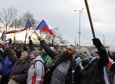 """""""Žádný roušky! Žádnej covid!"""" křičel muž 17. listopadu na demonstraci. V noci umřel. Na covid"""