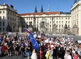 Demonstrace proti Miloši Zemanovi a Andreji Babišo...
