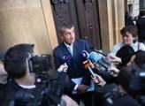 Andrej Babiš před zasedáním vlády