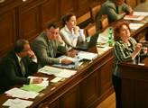 Vlasta Parkanová se před sněmovnou hájila proti sv...