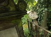 Hřbitov jako veřejný prostor. Praha dokončuje manu...