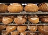 Byli jsme se podívat v jedné z největších pekáren ...