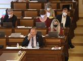 Zasedání sněmovny. Na programu mimo jiného i novel...