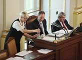 Ve sněmovně se hlasovalo o novele zákona o zbraníc...