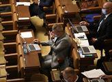 Ve sněmovně se projednávala podpora soukromých sub...