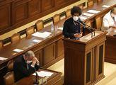 Růžena Chrasteková: Děsivé rozvolňování politické morálky, slušnosti