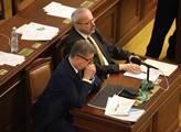 Současný ministr financí Andrej Babiš jako předkla...