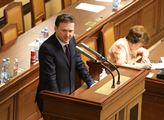 Nepřipojím se k všeobecnému kamenování Prymuly, oznámil šéf Sněmovny Vondráček