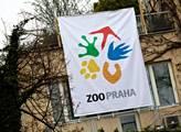 Zoo Praha má novou, geneticky cennou tapířici z francouzské Guyany