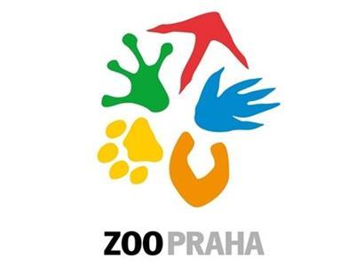 Zoo Praha: Želva s příběhem jak z Hollywoodu