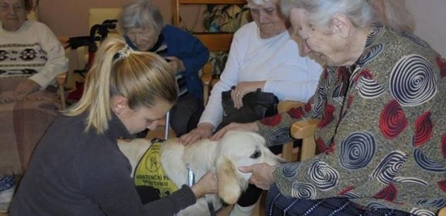 Praha 5: Odlehčovací pobytová služba pro rodiny, pečující o seniora