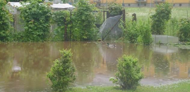 Povodně ohrožují i zvířata. Zoufalá majitelka koní prosí o pomoc