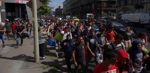Veselo na ČT v debatě o imigraci: Telička posílal Zemana psát memoáry, Ženíšek chválil práci EU, Sobotka žádal pomoc pro Syřany a nadnárodní analytik huboval české xenofoby