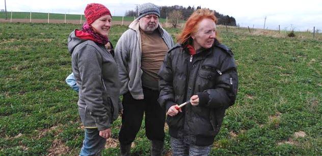 Brambory dražší než banány: Soudruzi plánovali, dnes se pěstuje podle dotací z EU, říká šéf svazu farmářů. Takhle je to s českým jídlem