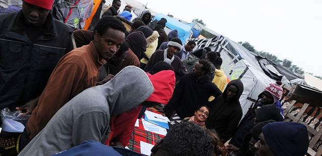 """Kulomety, to bylo a je řešení. Vyplení Německo a pak okolí, odmítá Štěpán Kotrba slova, že """"máme na rukou krev"""". Nová fakta o migraci z Afriky"""