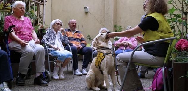Praha 5: Aktivizace jako součást soudobých trendů v péči o seniory