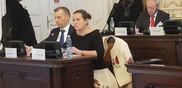 Nebudete svítit, nebudete topit. Alena Vitásková, Štěpán Kotrba a další o budoucím osudu Česka. Šlo i o Rusko