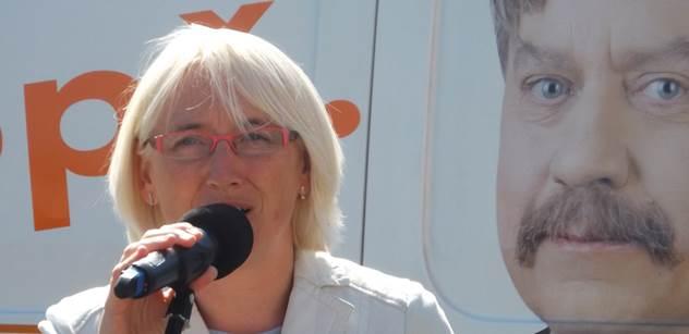 Do eurovoleb mají ČSSD vést nynější poslanci EP Poc a Sehnalová