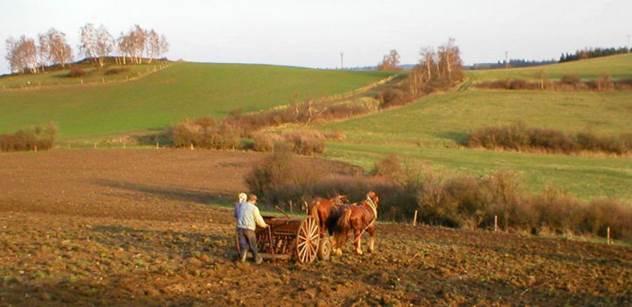 Asi už letos vyšle Česko do pěti států zemědělské diplomaty
