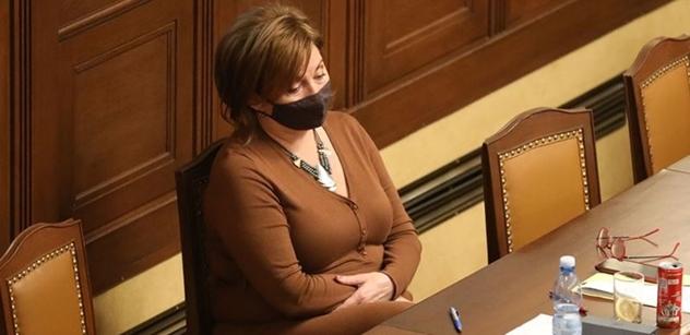 Sněmovna bude schvalovat zákon o majitelích nebo náhradní výživné